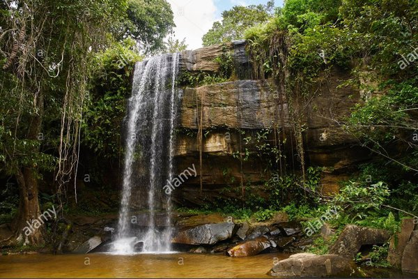 Shimba hills - Sheldrick waterfall
